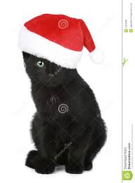black kitten in a christmas hat stock image image 16642801