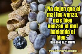 imagenes de mensajes biblicos cristianos no dejen que el mal los venza romanos 12 21 ntv letreros