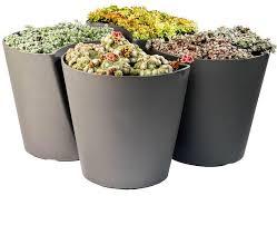 modern planters indoor u2014 home design stylinghome design styling