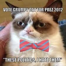 Mad Kitty Meme - the best of grumpy cat 70 pics