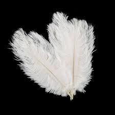 Where To Buy Ostrich Feathers For Centerpieces by Aliexpress Com Buy 10 Pcs Ostrich Feathers Plume Centerpiece
