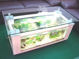 terrarium coffee table u2013 capsuling me
