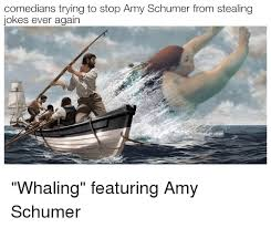 Whaling Meme - comedians trying to stop amy schumer from stealing jokes ever