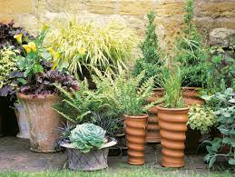 Potted Plant Ideas For Patio by Plantscaping A Deck Or Patio Hgtv