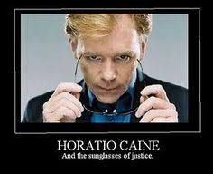 Horatio Caine Memes - david caruso acting david caruso memes pinterest david caruso