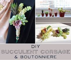 Succulent Boutonniere How To Make Your Own Succulent Corsage