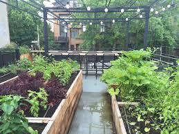 Urban Vegetable Garden by Restaurant Vegetable Garden U2013 Urban Seedling