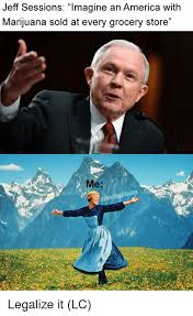 Grocery Meme - jeff sessions lmagine an america with marijuana sold at every