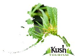 Alaska travel forums images Alaska marijuana laws is weed legal in alaska kush tourism png