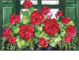 u0026 outdoor window box geranium matmate doormat