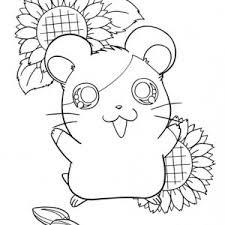 guinea pig stencil coloring page color luna