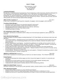 Software Project Manager Resume Sample by Test Manager Resume Resume For Your Job Application