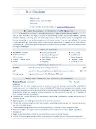 business advisor u0027s cv template2 cheque payments