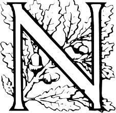 nut coloring page letter n is for nut coloring page letter n is for nut coloring