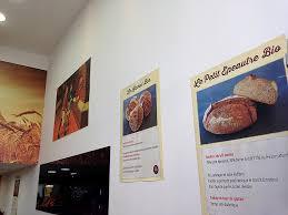 adh駸if mural cuisine adh駸if mural cuisine 100 images 電子書籍版 ライフサイエンス