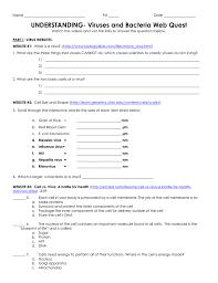 understanding virus and bacteria webquest