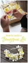 how to make a frangipani lei u2013 danya banya