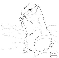 Mammals Groundhog Playing Golf Groundhogs Coloring Pages For Kids Groundhog Color Page