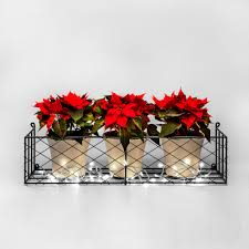 winter window boxes garden requisites