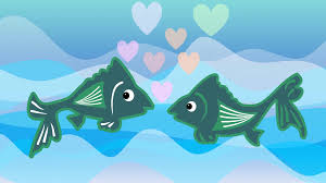 hd u0026 4k fish animation videos videoblocks royalty free fish