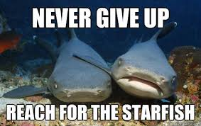 Starfish Meme - never give up reach for the starfish compassionate shark friend
