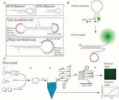 sensors free full text optimized detection of plasmodium