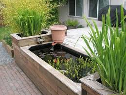 small raised ponds above ground pond kits home aquaponics