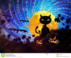 small halloween party halloween party background with cat royalty free stock photography