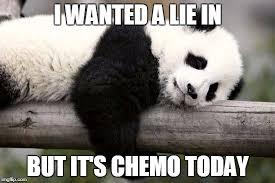 Memes De Pandas - sleeping panda memes imgflip