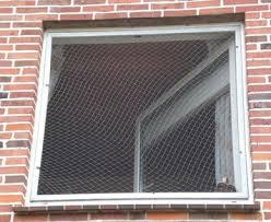 katzenschutz balkon warum ist es so wichtig fenster und balkone katzensicher zu machen