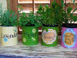 indoor kitchen garden ideas creative indoor herb garden herbs and