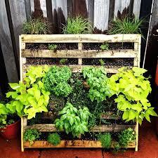 55 best herb flower or veg garden pallet u0026 reclaimed timber