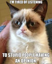 Funny Stupid People Memes - grumpy cat stupid people shut up no one cares what you think