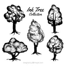 set of ink tree sketches vector free download