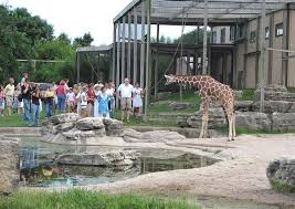 Kansas wild animals images Kansas zoos wildlife parks and animal sanctuaries JPG