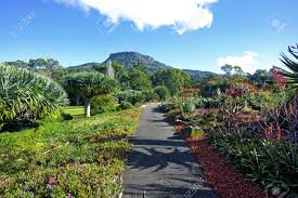 Wollongong Botanic Gardens A View Of The Wollongong Botanical Gardens In Australia Stock