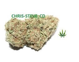 buy edible cannabis online buy marijuana edibles online buy edibles online buy cannabis