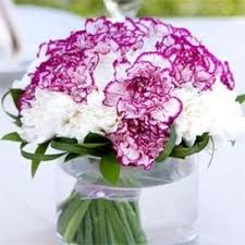 Carnation Flower Ball Centerpiece by 21 Best Centros Mesa Clavel Images On Pinterest Carnation