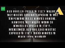 What Temperature Do Bed Bugs Die How Do You Kill Bed Bugs With Heat Youtube
