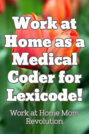 Medical Billing And Coding Job Description For Resume by Best 20 Medical Coder Ideas On Pinterest Medical Billing And