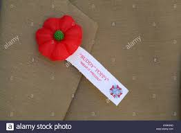 wearing poppies remembrance day stock photos u0026 wearing poppies
