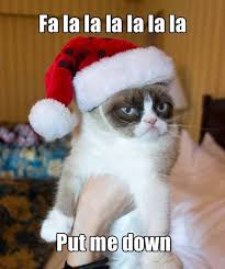 Angry Cat Meme - 20 angry cat memes very funny 2013 funny lytum