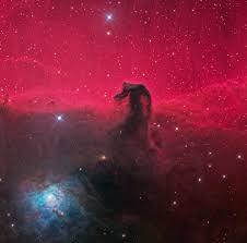 horsehead nebula wikipedia