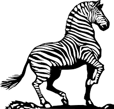 wood cut zebra black white art coloring sheet colouring