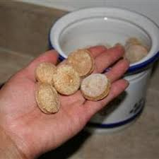 diabetic dog treats 5 treats recipes for your dog and cat diabetic dog