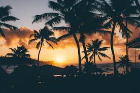 thinking about spending christmas in hawaii book now hawaii