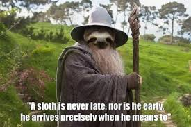 Sloth Meme Images - phish net sloth meme thread