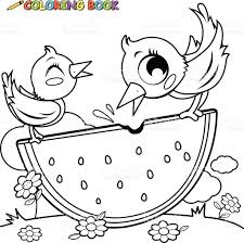 birds eating watermelon coloring book page stock vector art