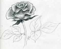 25 beautiful easy rose drawing ideas on pinterest easy flower