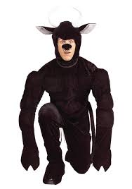 halloween costumes for rent in cebu city animal costumes animal costume rentals